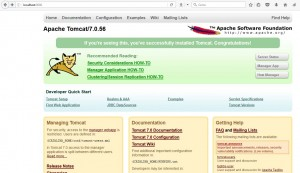 XAMPP Apache Tomcat main window configuration